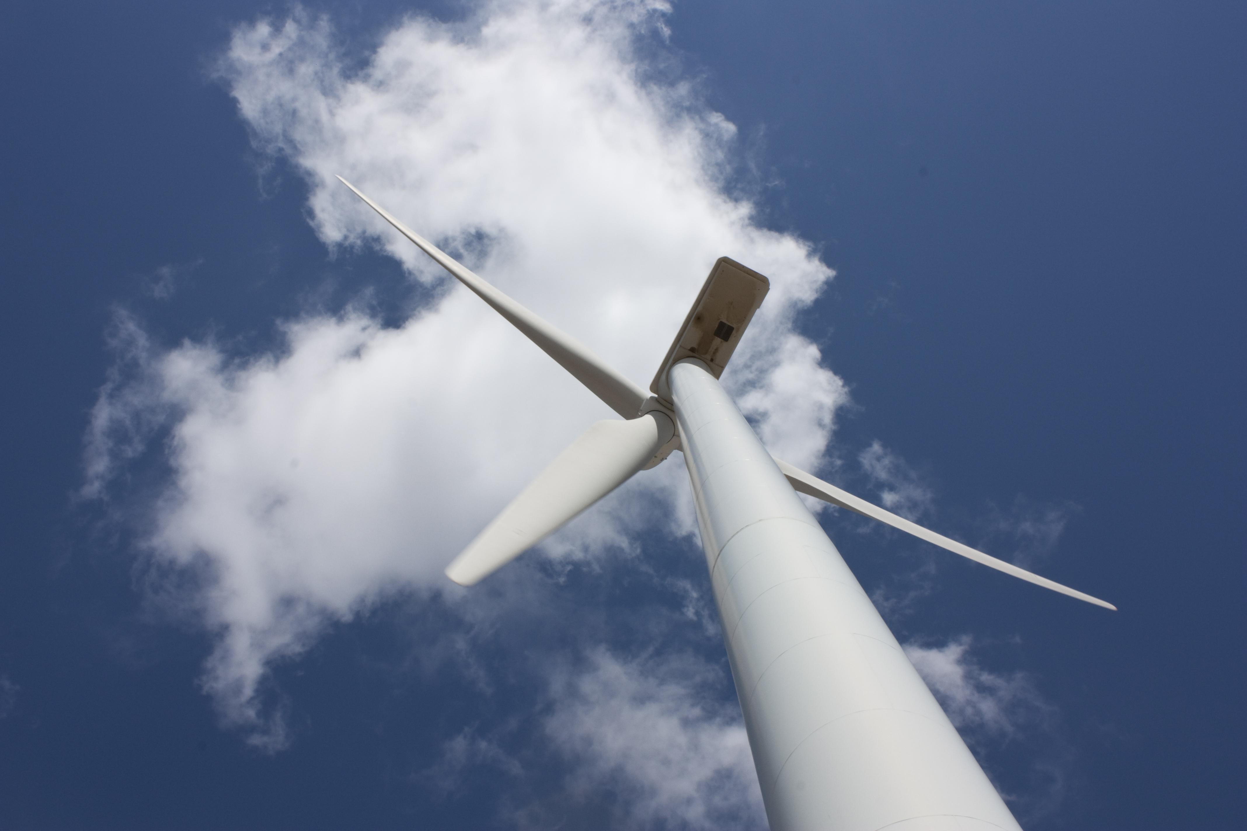 AlmaCG et Valoricert unissent leur énergie pour vos économies